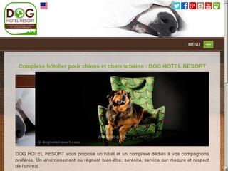 dog-hotel-resort.jpg